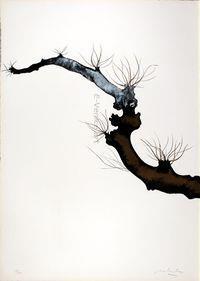 CarloMATTIOLI, Gli alberi III