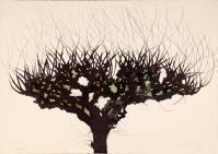 CarloMATTIOLI, Gli alberi IV