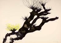 CarloMATTIOLI, Gli alberi I