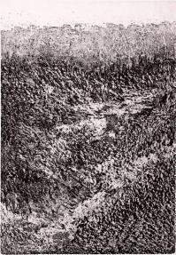 acquaforte originale firmata. - tiratura: 50. - su carta cotone Magnani di Pescia 35 x 50 cm. - (lastra 32,8 x 22,8 cm). -  riferimenti: Pubblicato Catalogo Edi-Grafica R2 B2 di Firenze (vedi timbro  secco in basso a sinistra)